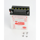 Yumicron High Powered 12-Volt Battery - YB14L-A1