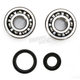 Crank Bearing and Seal Kit - 23.CBS31099
