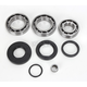 Rear Differential Bearing Kit - 1205-0260