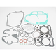 Complete Gasket Set with Oil Seals - 0934-0101