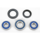 Wheel Bearing and Seal Kit - 25-1286
