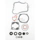 Complete Gasket Set with Oil Seals - M811613