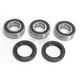 Rear Wheel Bearing Kit - 301-0285
