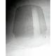 Clear Tour Shield - T166C