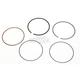 Piston Rings - 51-256-05