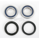 Rear Wheel Bearing Kit - A25-1032