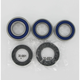 Wheel Bearing and Seal Kit - 25-1039