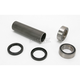 Axle Housing Rebuild Kit - 21P42103