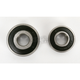 Rear Wheel Bearing Kit - PWRWK-S33-000