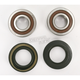 Front Wheel Bearing and Seal Kit - PWFWS-H31-000