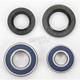 Front Wheel Bearing Kit - A25-1044