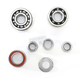 Transmission Bearing Kit - TBK0063