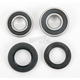 Rear Wheel Bearing Kit - PWRWK-H18-008