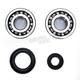 Crank Bearing and Seal Kit - 23.CBS13092