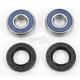 Front Wheel Bearing Kit - A25-1104