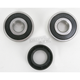 Rear Wheel Bearing Kit - PWRWK-H50-521