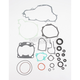 Complete Gasket Set with Oil Seals - M811667