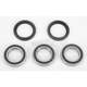Rear Wheel Bearing Kit - PWRWK-K13-021