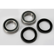 Rear Wheel Bearing Kit - PWRWK-Y32-000