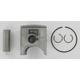 Piston Assembly - 01.6105.A