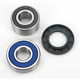Wheel Bearing and Seal Kit - 25-1383