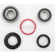 Rear Wheel Bearing Kit - PWRWK-H06-520