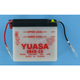 Conventional 6-Volt Battery - 6N4B-2A