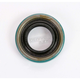 Starter Shaft Seal - 12066