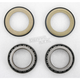 Steering Stem Bearing Kits - 22-1012