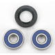 Front Wheel Bearing Kit - A25-1172