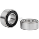Replacement ABS Bearing for 23 in. Front Wheels - 18-896
