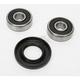 Front Wheel Bearing Kit - PWFWK-Y18-001