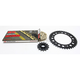 Gold Honda GB520GXW Acceleration Chain with Steel Sprocket - 1102-089PG
