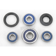 Wheel Bearing and Seal Kit - 25-1238