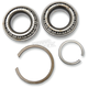 Crankcase Main Bearings - A-24729-74A