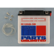 Standard 12-Volt Battery - R12N93B