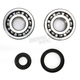 Crank Bearing and Seal Kit - 23.CBS33094