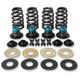 .585 in. Valve Spring Kit - 900-0594
