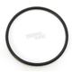 Starter Clutch Gear O-Ring - C9458