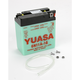 Conventional 6-Volt Battery - 6N11A-1B