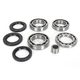 Rear Differential Bearing Kit - 1205-0259
