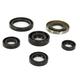 Oil Seal Kit - 0935-0824
