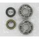 Crank Bearing/Seal Kit - A24-1011