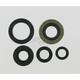Oil Seal Set - M822139