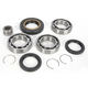 Rear Differential Bearing Kit - 1205-0216