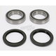 Rear Wheel Bearing Kit - PWRWK-S12-500