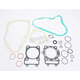 Complete Gasket Set with Oil Seals - M811828