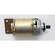 Starter Motor - 2110-0360