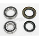 Rear Wheel Bearing Kit - PWRWK-Y13-002