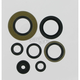 Oil Seal Set - 0934-0285